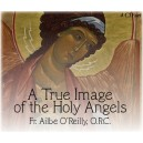 Holy Angels 3 - St. Gabriel the Archangel - Fr. Ailbe O'Reilly